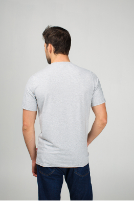 Grey men's t-shirt with eagle