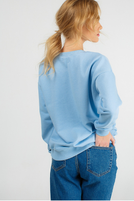 Blue sweatshirt with piggy print